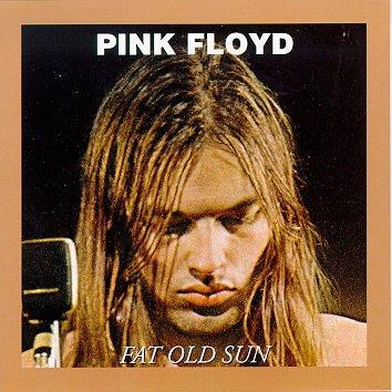 Pink Floyd Fat 23
